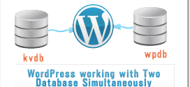 WordPress working with Two Database Simultaneously