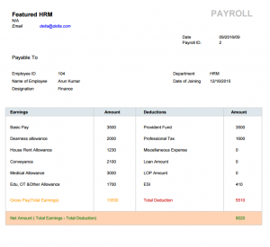 payslip-report